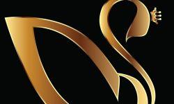 Prestige Group Academy